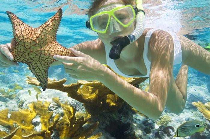 Scuba Diving in COn Dao Island