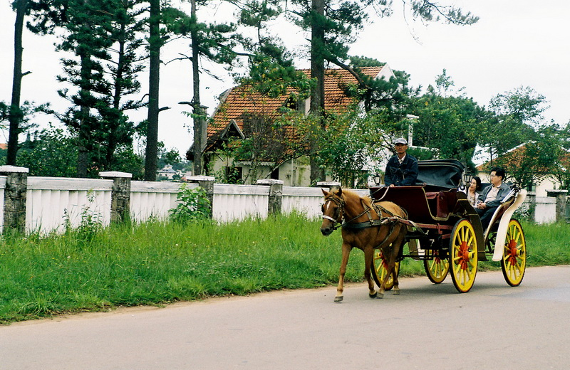Da Lat City Tour by horse carriage