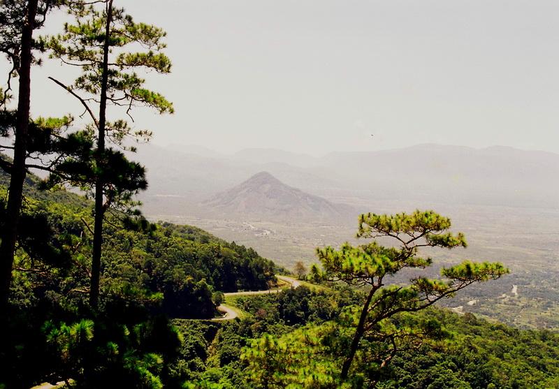 Fin Forest in Da Lat, Vietnam