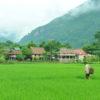 A Thai Village in Mai Chau