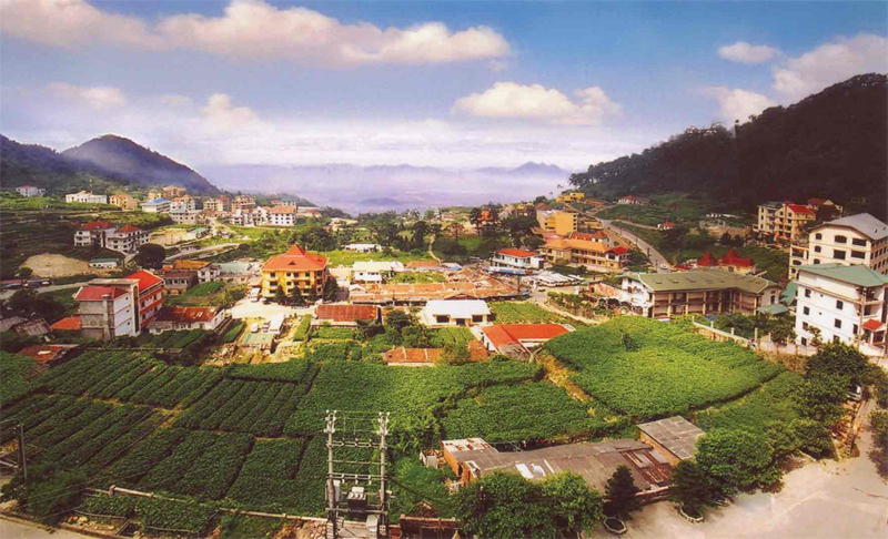 Tam Dao – An ideal place in Vietnam for active honeymooners